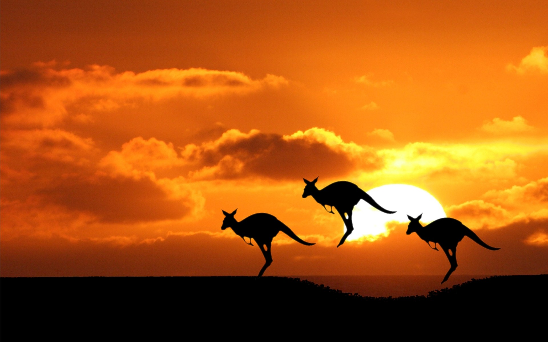 wallpaper australia 62 wallpapers