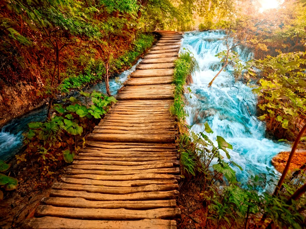 Beautiful wallpapers nature free download