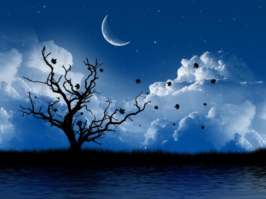 Blue Moon Hd Desktop Wallpaper High Definition Fullscreen 1024x768