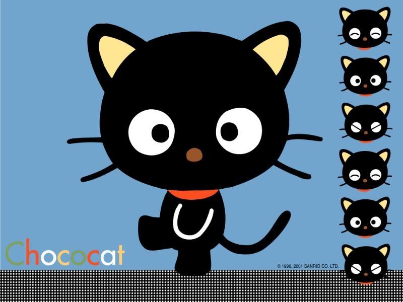 Cute Cartoon Cat Wallpaper 800x600