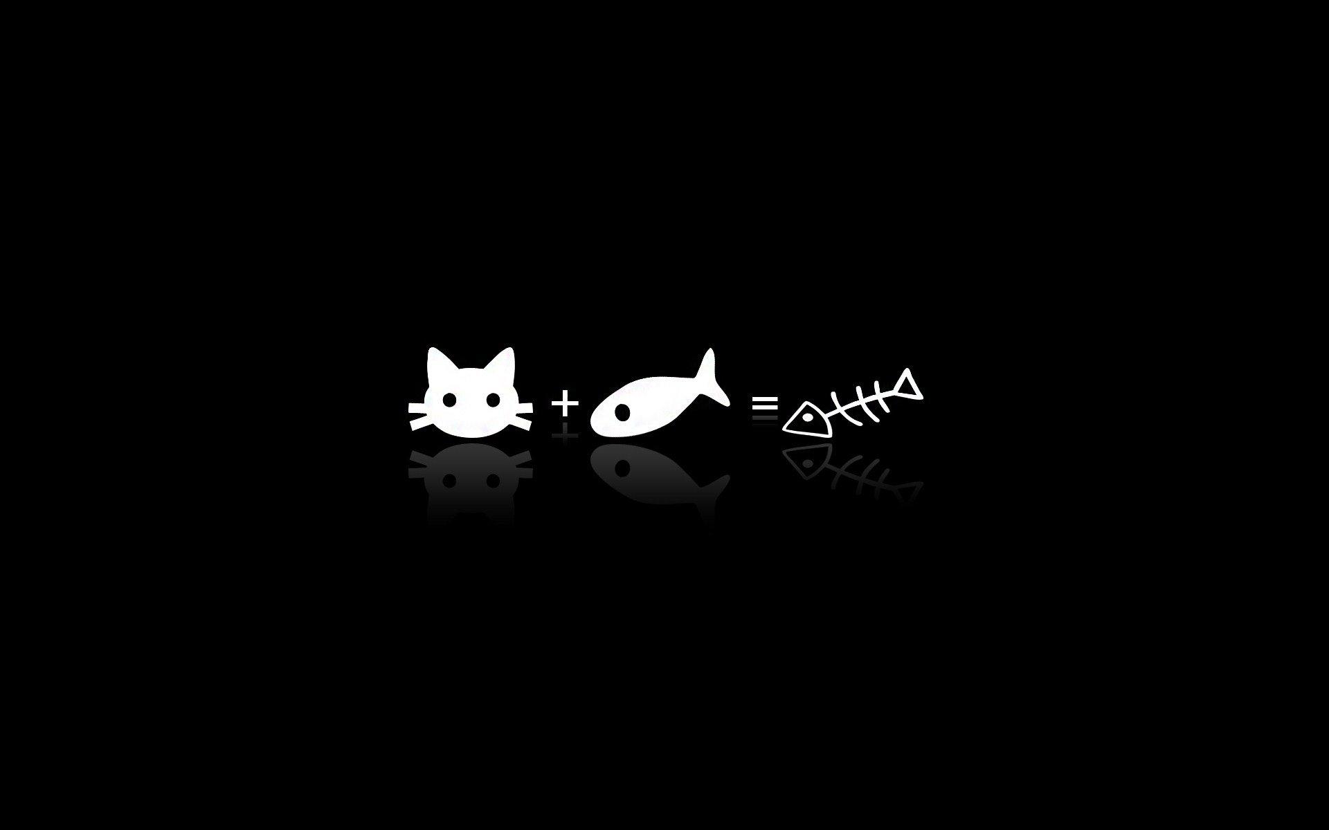 Cute Cat Cartoon Galaxy S Wallpapers Curiosities Giggles 1920x1200