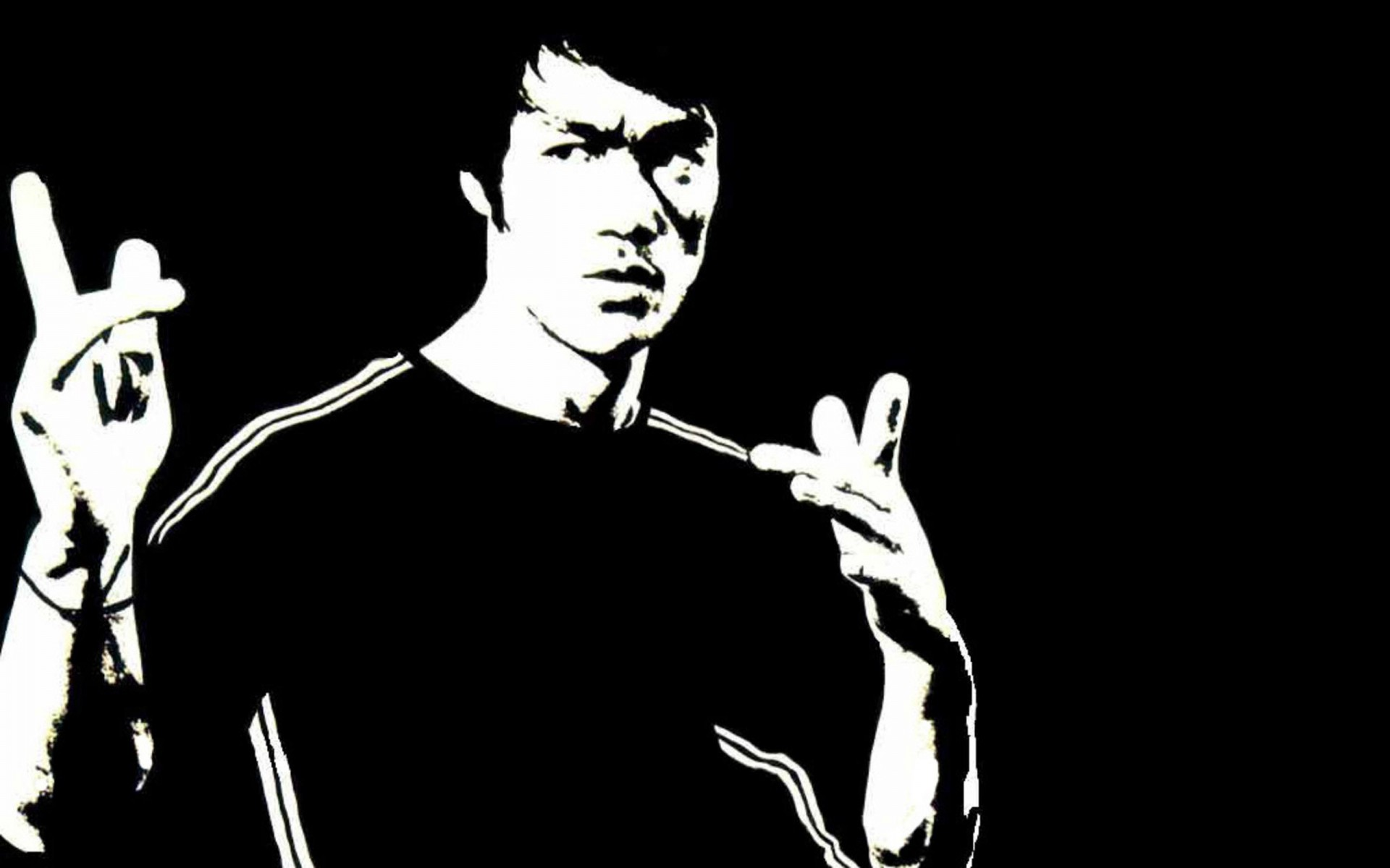 Bruce Lee HD Wallpapers Bruce Lee high quality and definition 1920x1200