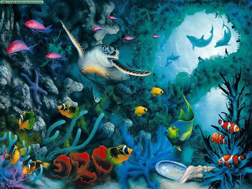 Animated Under The Sea Wallpaper  Wallpapers Kid 808x606