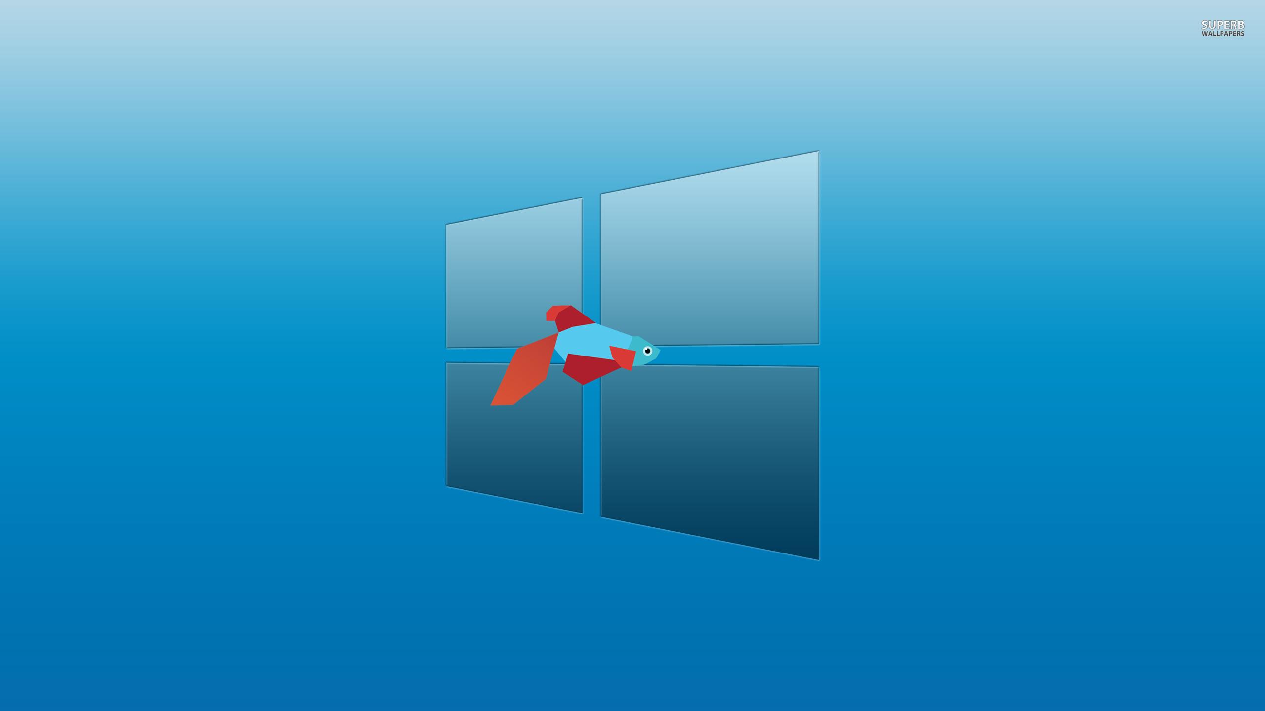 Wallpapers For Windows Desktop Wallpaper 2560x1440