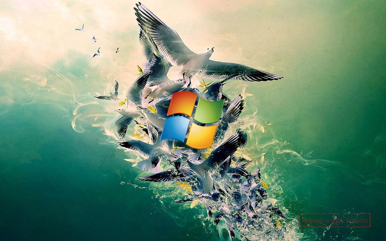 Top Photos of Windows HD HD Widescreen HBC Windows HD