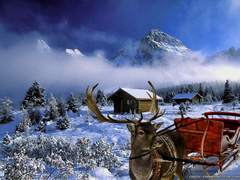 Winter Christmas Wallpapers 058