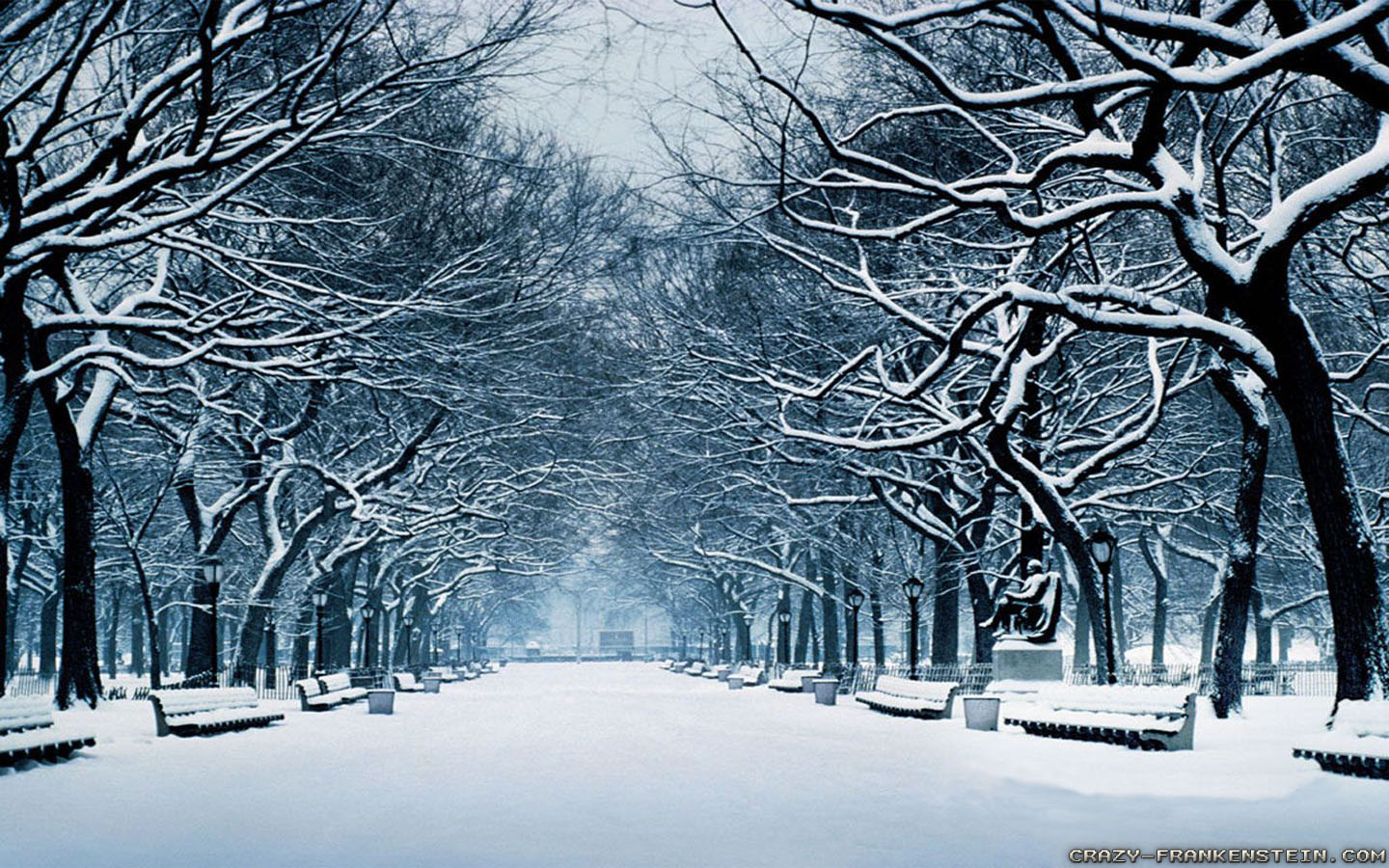 Beautiful Winter Wallpapers For Your Desktop  Hongkiat 1440x900