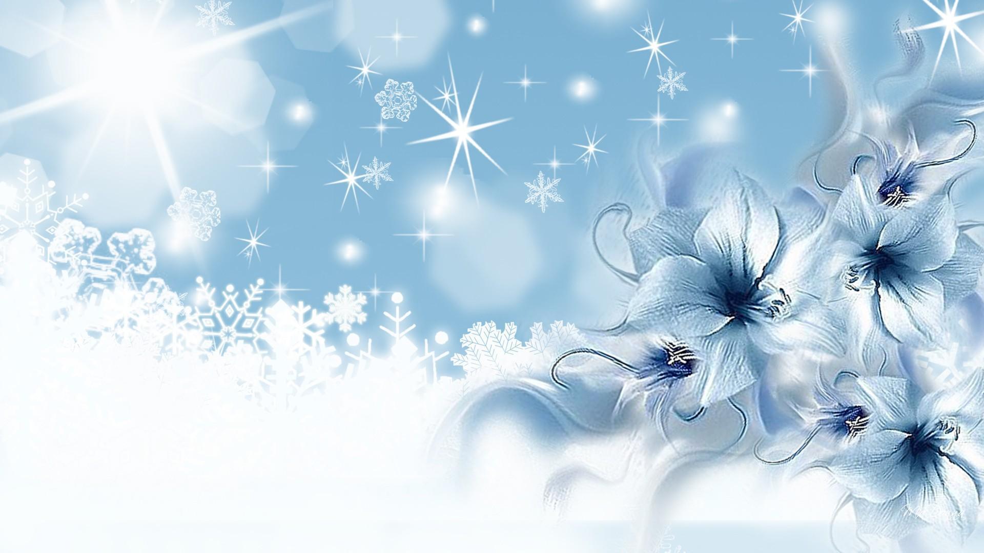 Winter Night Hd Desktop Wallpaper High Definition