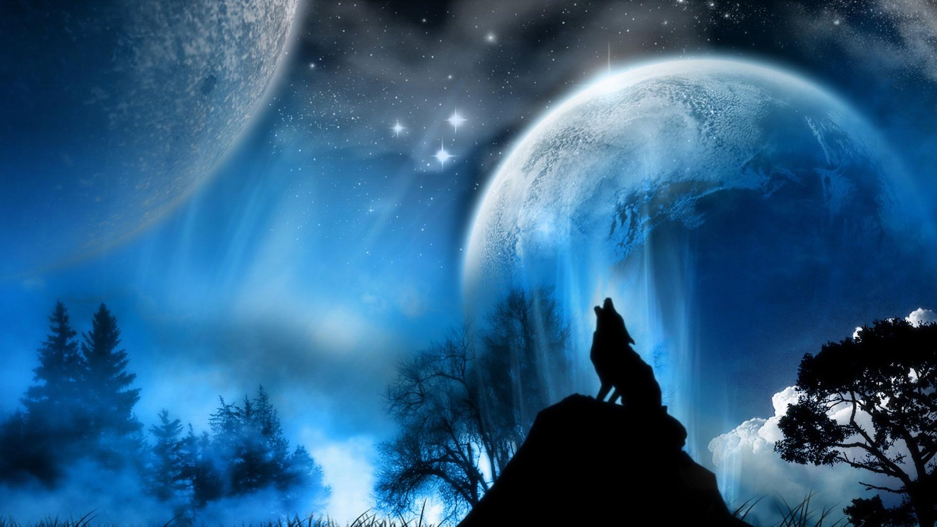 Wolf Wallpaper 024