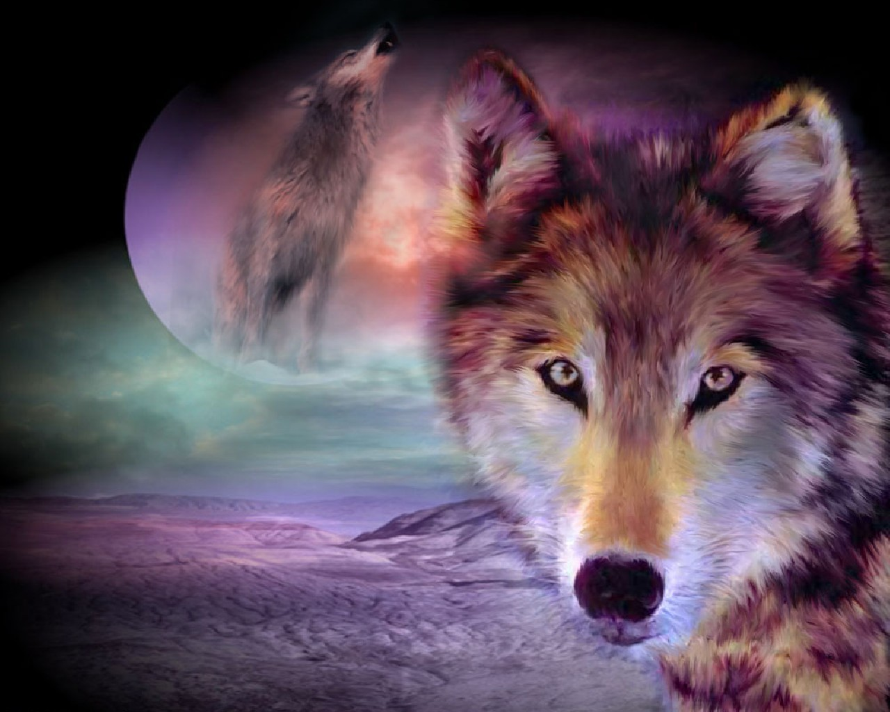 wolf desktop backgrounds : Ukrobstep  Top Ranked Wolf Wallpapers, PCNHI, High Definition 1280x1024
