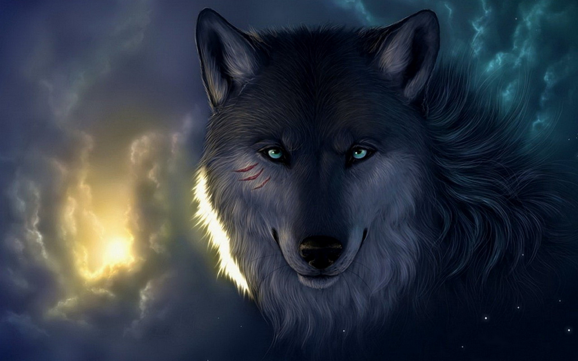 Wolf Wallpapers Wallpaper  1920x1200