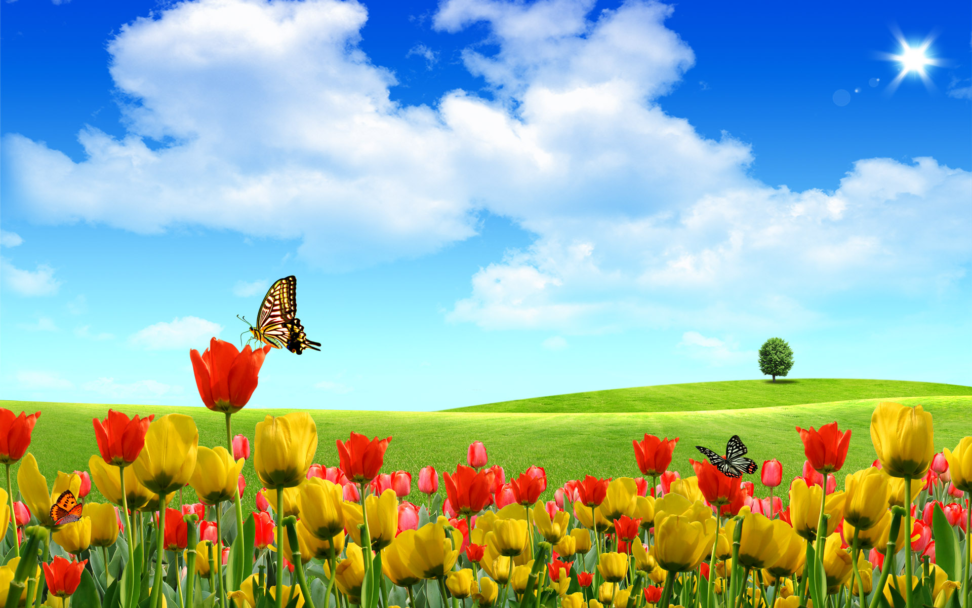 windows xp hd wallpaper best collection azcrack 1920x1200