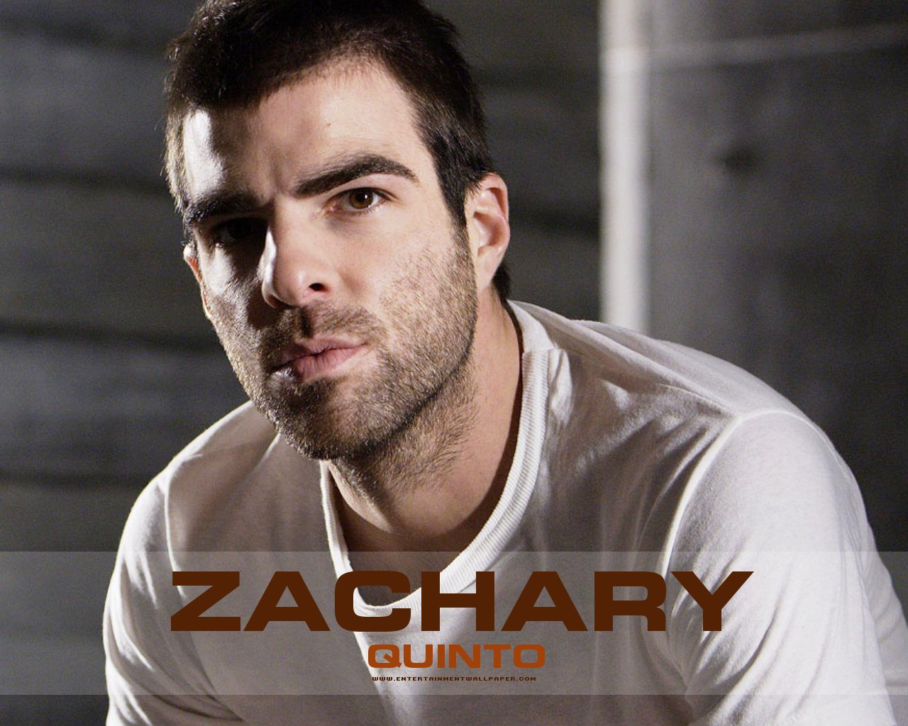 Zachary Quinto Wallpapers Images Photos Pictures Backgrounds 1280x1024
