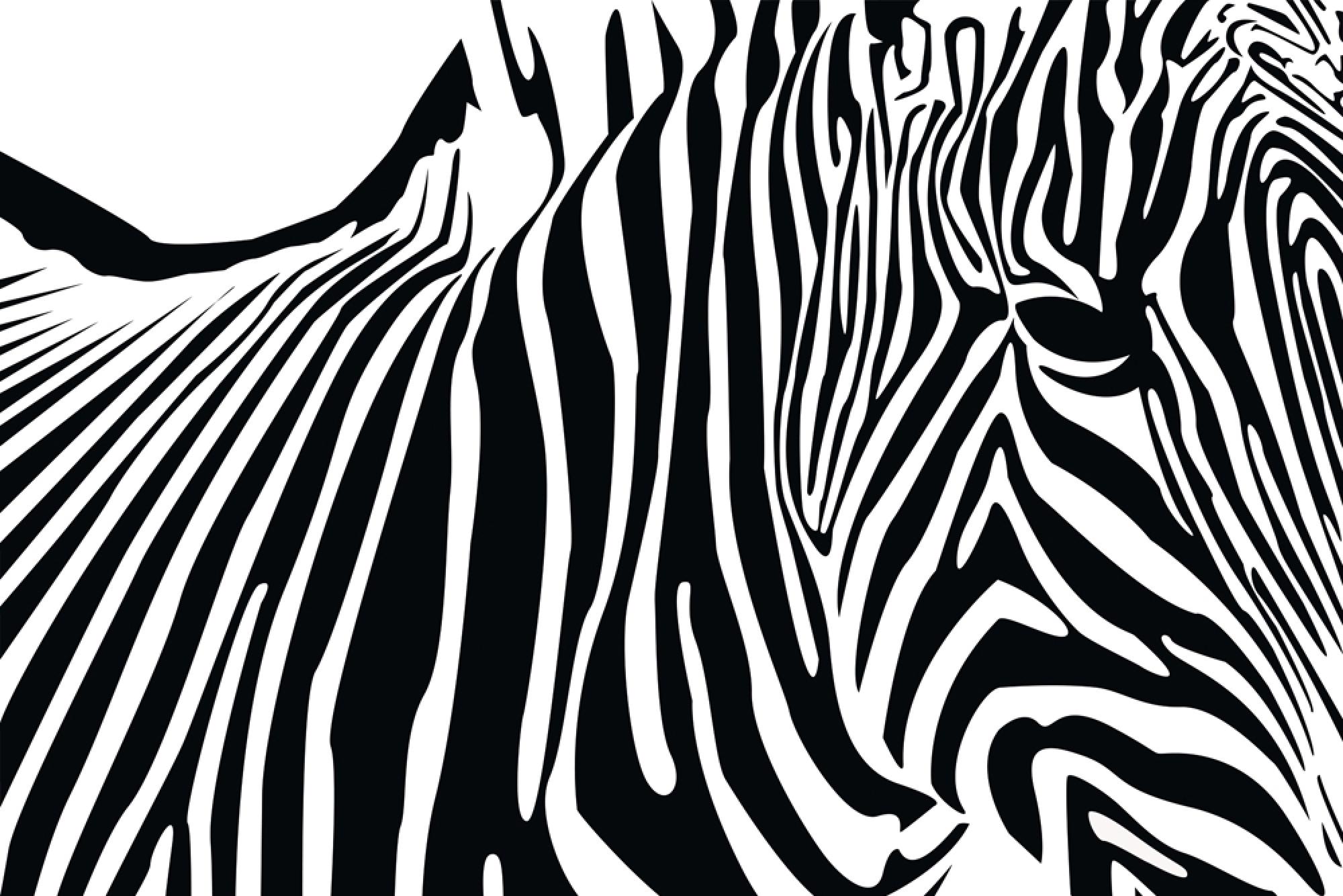 Zebra patterned wallpaper - Zebra Patterned Wallpaper 42