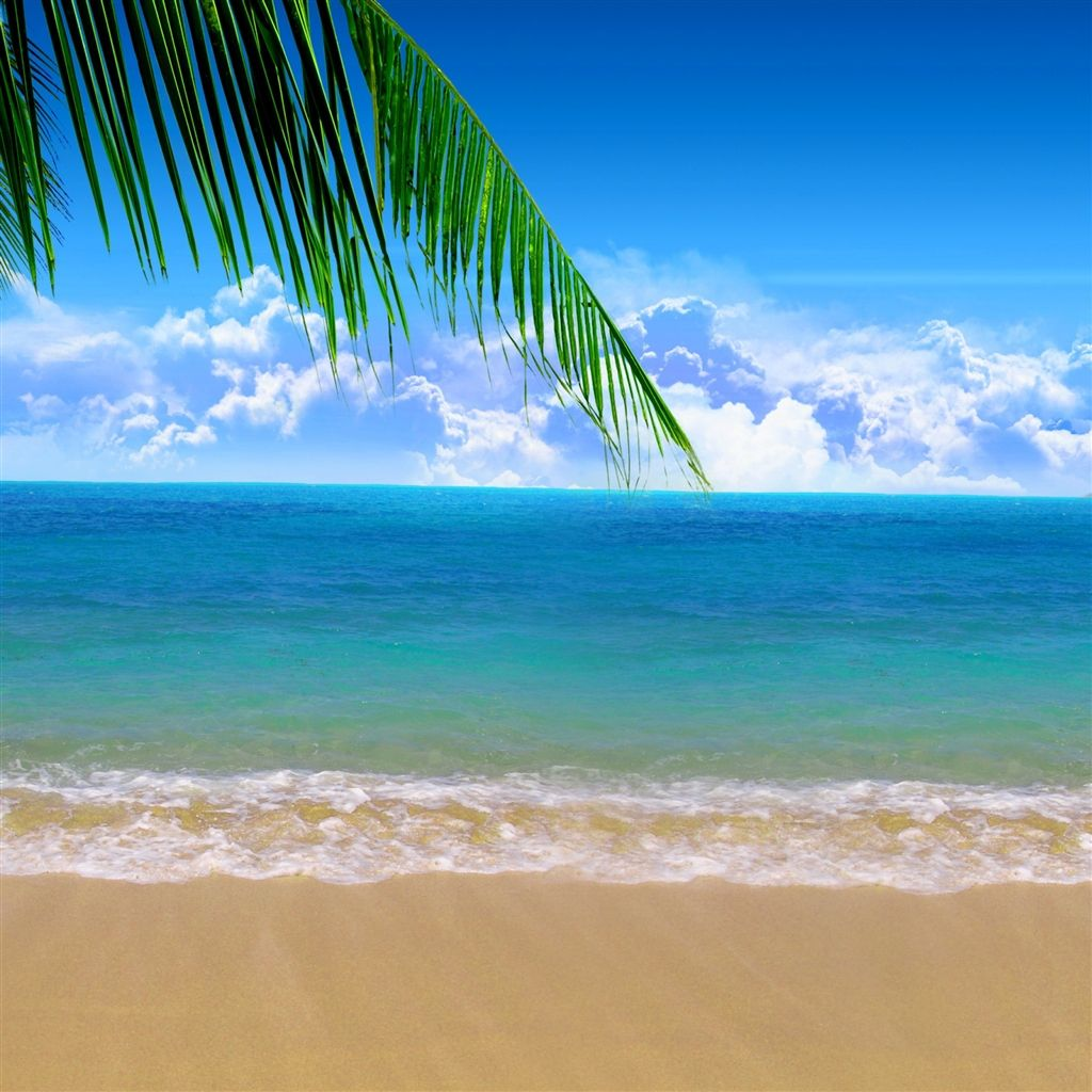 Summer Beach iPad Air Wallpapers With